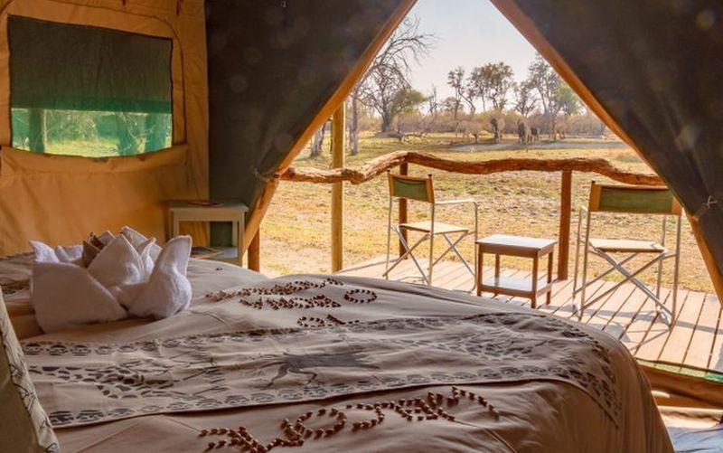 O Bona Moremi Zelt Zimmer Bett Blick nach draussen mit Elefanten