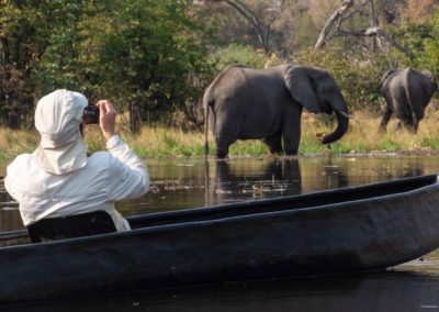 Guest photographing two elephants on a traditional Mokoro Safari in Khwai
