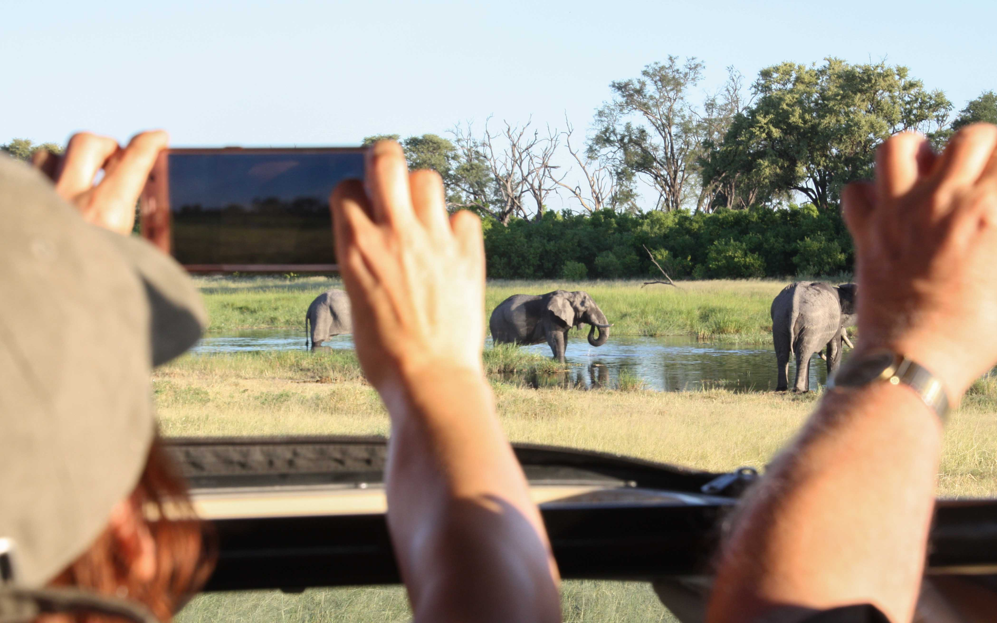 Guests photographing the wildlife of Botswana on a Safari in Khwai.