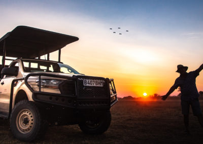 Open game viewing vehicle in the setting sun in Botswana