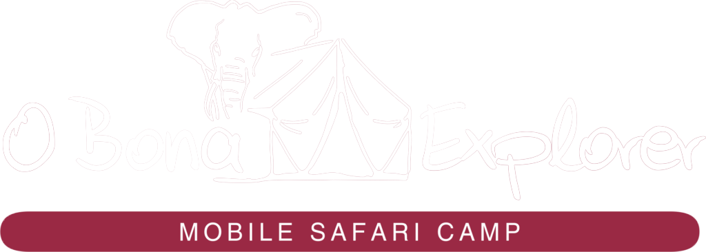Logo of O Bona Explorer - Mobile Safari Camp